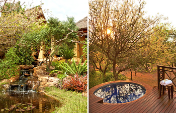 Garden Plunge Pool Thanda Private Villa iZulu Exclusive Use Thanda Private Game Reserve Accommodation Bookings